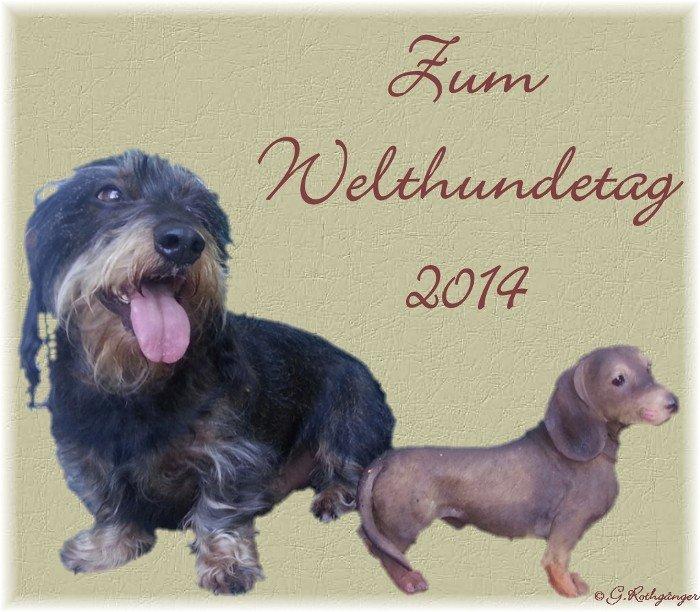 An den Beitrag angehängtes Bild: http://img30.dreamies.de/img/117/b/9z7emkomm0k.jpg